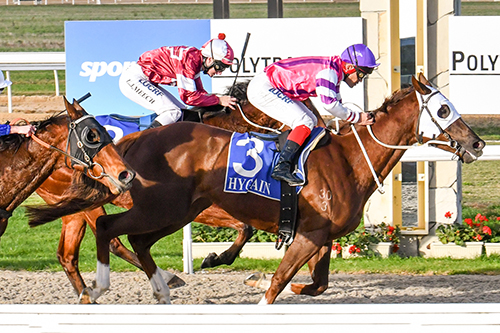 EXFLYTATIONS BRAVE WIN AT PAKENHAM..