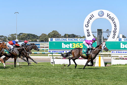ZENDE WINS IMPRESSIVELY AT GEELONG..